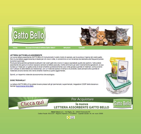 gatto bello